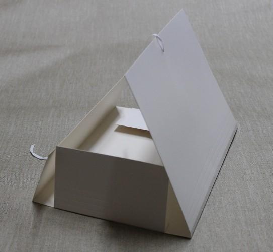 Mappe Carton Case weiß mit Band(9051)