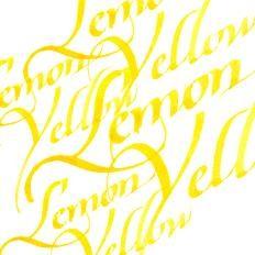 Winsor & Newton Kalligraphie Tuschen 30 ml
